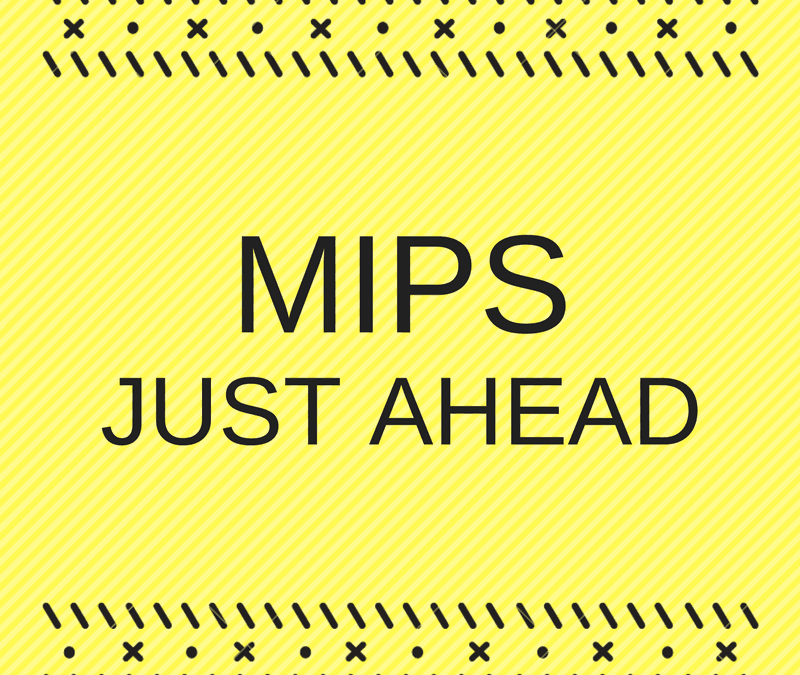 MIPS Overview: Essential Information You Must Know